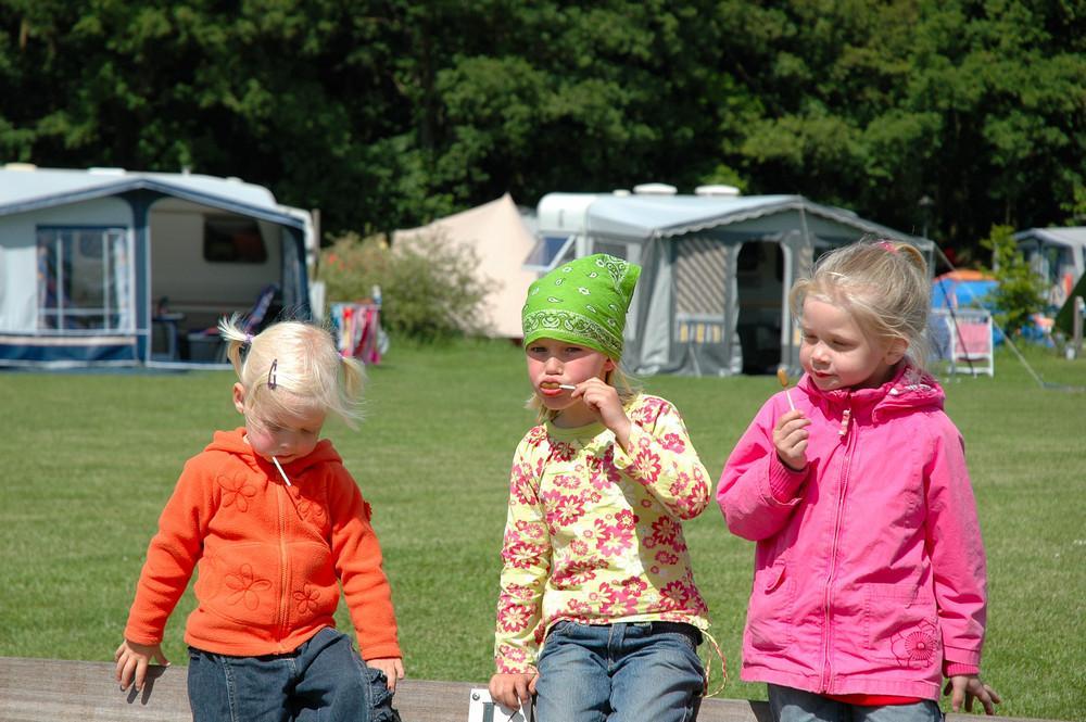 Camping-de-Bronzen-Emmer-6